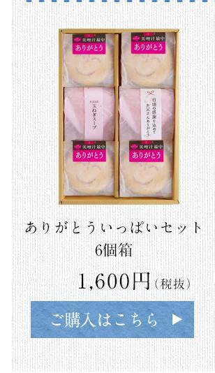 ありがとういっぱいセット 6個箱 1,600円(税抜)